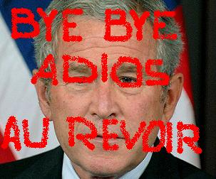 BYE BYE, BUSH